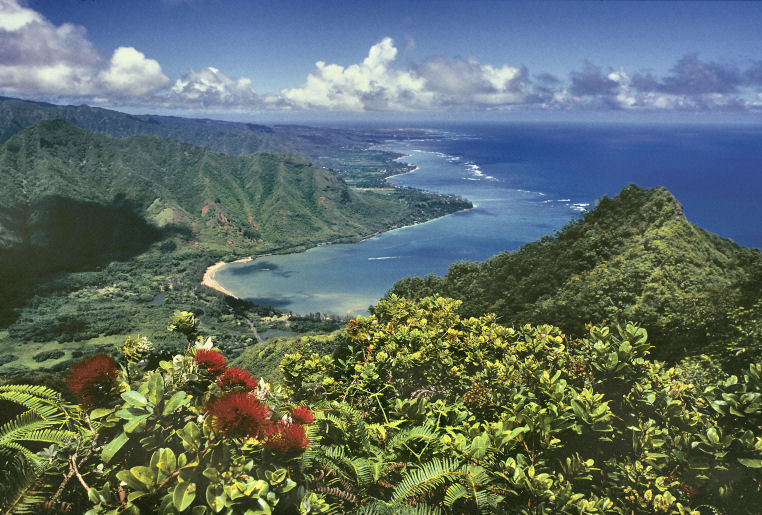 Ridge above Kahana Bay, Island of O'ahu - photo credit: Nathan Yuen