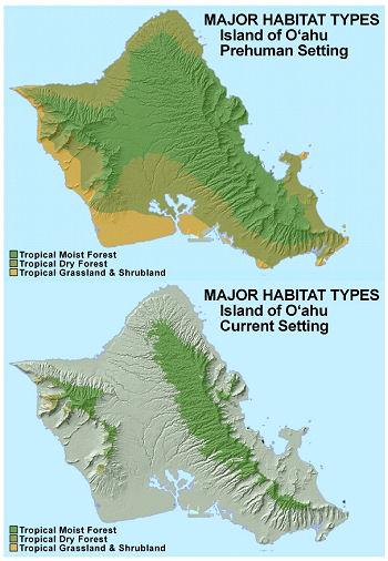 Major Habitat Types