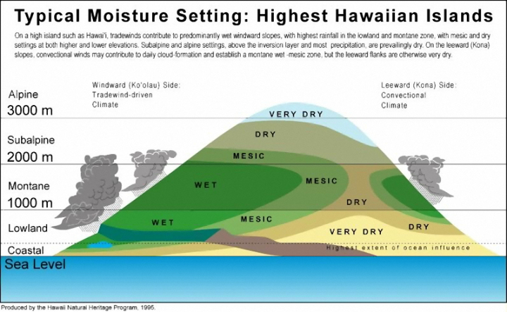 elevation and moisture settings of Hawai'i