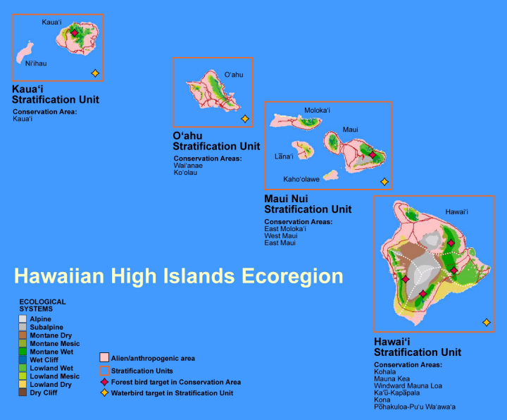 Stratification Units for Hawaii